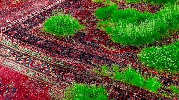 grass and persian rug